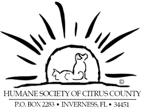 Logo With Address